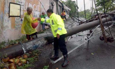 Kapolresta Sidoarjo Cek Lokasi Pohon dan Tiang Listrik Tumbang di Krian